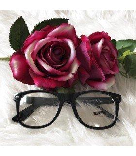 Óculos de Sol Transparente